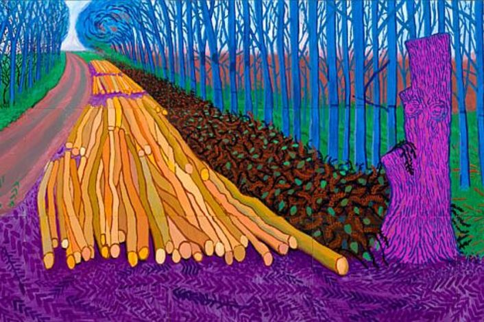 005_DEF_hockney-winter-timber
